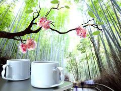 Beautiful sakura season - stock illustration