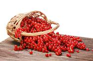 Stock Photo of basket of ripe juicy red currant