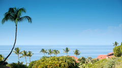Oceanside Paradise, HD Video Background Stock Footage