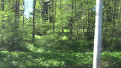 ULTRA HD 4K POV train mountain forest wildlife passing window view panorama wood Stock Footage