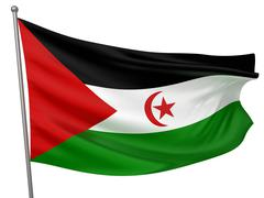 Western Sahara (Sahrawi Arab Democratic Republic) National Flag Stock Photos