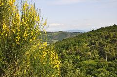 Landscape from umbria Stock Photos