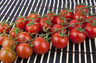 Fresh Cherry Tomatoes on the branch Stock Photos