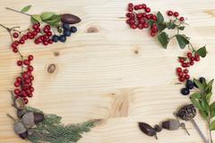 Autumn berries and acorns on wood Stock Photos