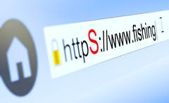 Stock Illustration of closeup of browser bar with https typed in, padlock and fishing domain name