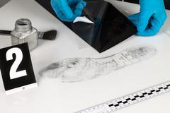 disclosure of forensic evidence. - stock photo