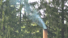 Grill smoke from a restaurant, Grilled sausages, Food, Tourism, Holiday Stock Footage