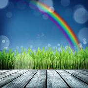 Spring nature background with grass Stock Illustration