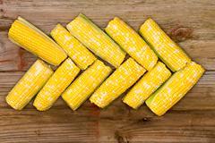 fresh corn on the cob arranged in an arrow - stock photo