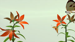 LILLY PLANT - stock footage