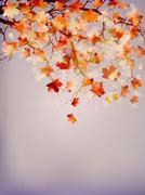 Beautiful autumn background. EPS 10 Stock Illustration