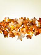 Autumnal leaf of maple and sunlight. EPS 10 Stock Illustration