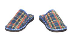 Stock Photo of Checked slippers