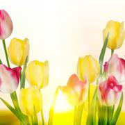 Green grass and pink tulips. EPS 10 - stock illustration