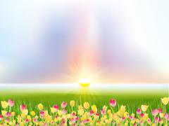 Spring flowers tulips in the sunlight. EPS 10 Stock Illustration