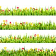 Green grass and beautiful spring flowers. EPS 10 Stock Illustration
