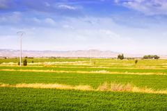 Rural landscape with fields in Aragon - stock photo