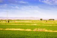 Stock Photo of Rural landscape with fields in Aragon