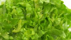 4K Green Lettuce Food Vegetable Stock Footage