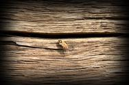 Stock Photo of bug on old oak wood plank on exterior facade of traditional building