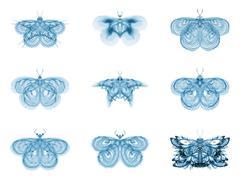 Metaphorical Fractal Butterflies Stock Illustration