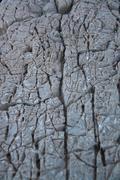 texture of monument of gods on nemrut mountain - stock photo