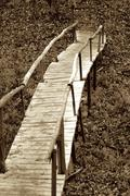 Wooden Foot Bridge - stock photo