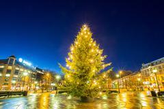 light Christmas tree - stock photo