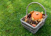 Stock Photo of Rustic basket with pumpkin, fir cones and leaves