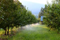 Orchard irrigation Stock Photos