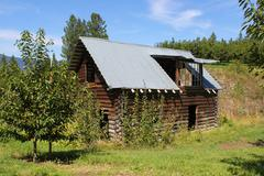 Orchard and log shed - stock photo