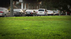 City traffic timelapse scene with green grass Stock Footage