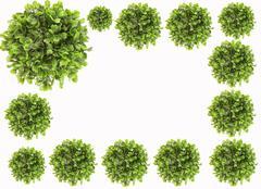 plant cluster border - stock illustration