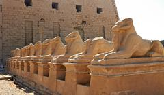 alley of ram-headed sphinxes in front of karnak temple, egypt - stock photo