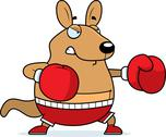 Cartoon wallaby boxing Stock Illustration