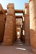 Great hypostyle hall with giant lotus columns Stock Photos