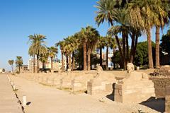 Alley of sphinxes, luxor Stock Photos