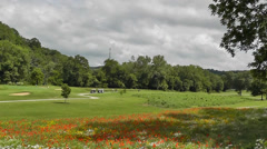Beautiful Spring Day on the Golf Course w Wildflowers Stock Footage