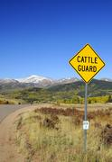 cattle guard road sign - cattle grid - stock photo