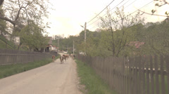 Group cow herd walk home mountain rural village house rustic road street family  Stock Footage