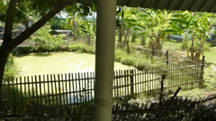 Pond and garden of a 110-year-old Chinese school in Chiang Mai,Thailand. Stock Footage