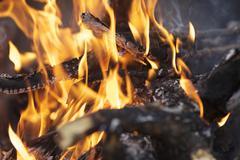 Fire place. burning wood Stock Photos