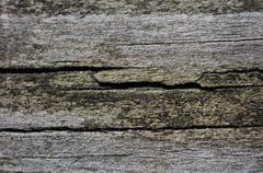 Old wood board. cracked wood background Stock Photos