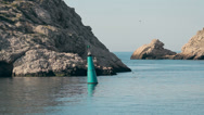 Stock Video Footage of Dolphin dives to the Black sea in the harbour in Crimea, Balaklava, Russia next