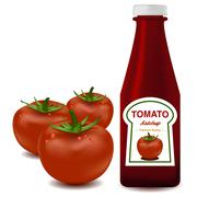 Vector of ketchup and tomato in white isolated Stock Illustration