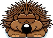 Stock Illustration of sleeping little porcupine