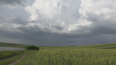 Dramatic cloud sky pond lake field cultivated hurricane summer day wheat fresh  Stock Footage