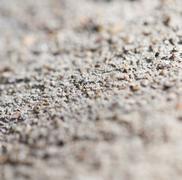 Concrete wall. macro Stock Photos