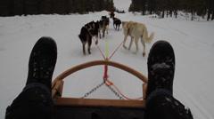 Husky ride Stock Footage