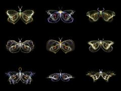 Visualization of Fractal Butterflies Stock Illustration